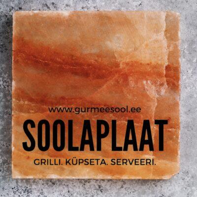 Soolaplaat grillimiseks ja toidu serveerimiseks 20x20x2.5cm
